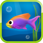 Best Hungry Fish FOR PC