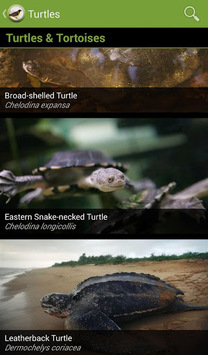 Field Guide to Victorian Fauna APK screenshot 1