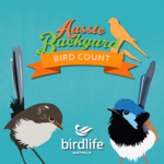 Aussie Bird Count icon