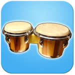 Bongo Drums (djembae, bongo, conga, percussion) FOR PC