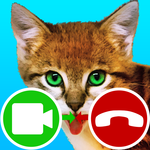 fake call video cat game icon