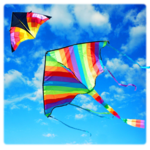 Basant The Kite Fight icon