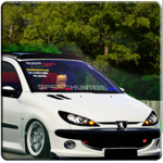 206 Driving Simulator icon