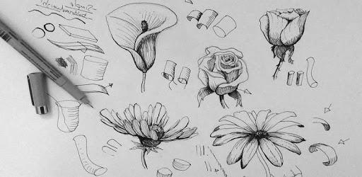 Flower pc screenshot