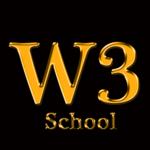 w3Schools 2018 offline icon
