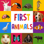 First Words for Baby: Animals APK icon