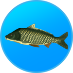 True Fishing. Fishing simulator icon