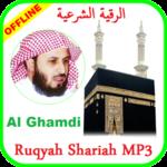 Ayat Ruqyah mp3 Offline Sheikh Saad al Ghamdi icon