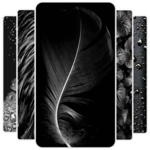 Dark Wallpaper APK icon