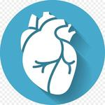 Cardiology Mnemonics, ECG, Heart Sounds & Murmurs icon