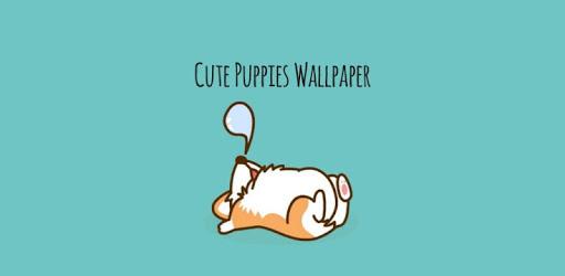 Cute Puppy Wallpaper pc screenshot