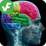 ⭐ Verified Facts - Verifacts icon