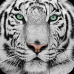 Puzzle - Wild animals icon