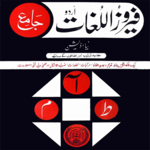 Urdu Dictionary icon