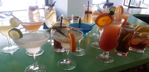 My Cocktail Bar Guide pc screenshot
