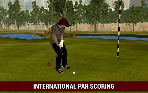 Professional Golf Play 3D - Real of 2018 APK screenshot 1