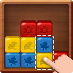 Break the Block: Slide Puzzle icon