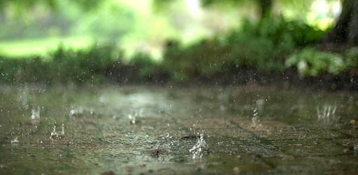Real Rain Live Wallpaper PC Download on Windows 10/8.1/7 ...