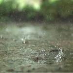 Real Rain Live Wallpaper icon