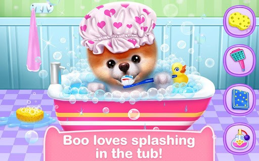 Boo - The World's Cutest Dog APK screenshot 1