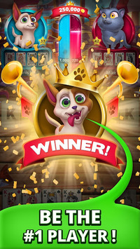 Solitaire Pets Arena - Online Free Card Game APK screenshot 1