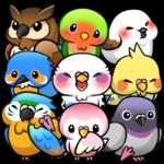 Bird Life icon