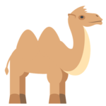 TryCamel for pc icon