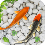 Fish Live Wallpaper 2018: Aquarium Koi Backgrounds icon