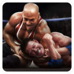 Real Wrestling 3D FOR PC