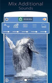 Nature Sounds APK screenshot 1