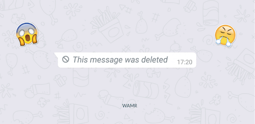 WAMR - Recover deleted messages & status download pc screenshot