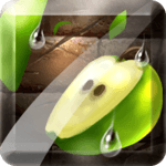 Fruit Slice for pc icon