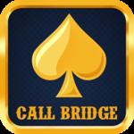 Call Bridge Card Game icon