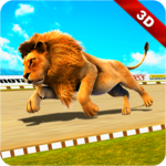 Wild Lion Racing Fever : Animal Race icon
