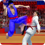 Tag Team Karate Fighting Tiger: World Kung Fu King APK icon