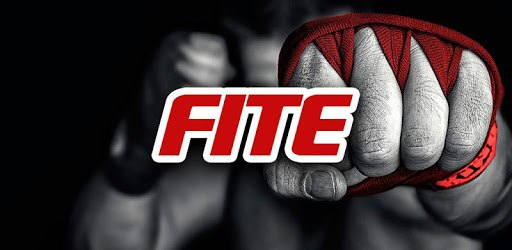 FITE - Boxing, Wrestling, MMA pc screenshot