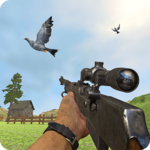 Pigeon Hunting Pigeon Pop Pigeon Shoot icon