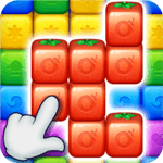 Fruit Block - Puzzle Legend for pc icon