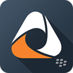 BlackBerry Access icon