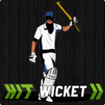 Hit Wicket Cricket - English County League Game FOR PC