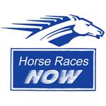 Horse Races Now icon