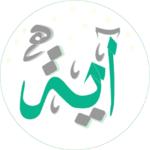 كل يوم أيه وتفسيرها بدون انترنت (kol youm Aya ) icon