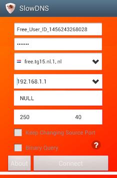 VPN Over DNS  Tunnel : SlowDNS APK screenshot 1
