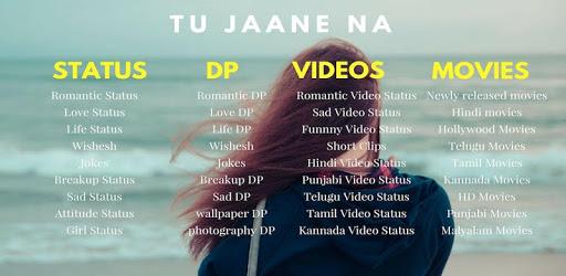 status, shayari, DP status, video status, meme pc screenshot