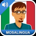 Learn Italian icon