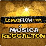 music reggaeton icon