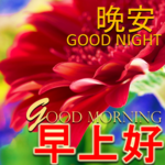 Chinese & English  Morning Afternoon Evening Night icon