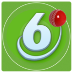 Sixer Cricket Hero FOR PC