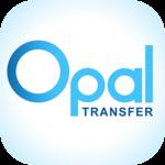 Money Transfer App icon