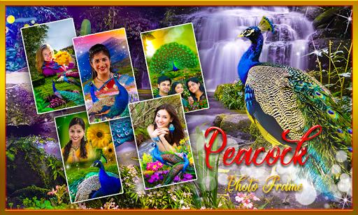 Peacock Photo Frame : Garnish your photos APK screenshot 1